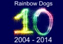 10 Years Experience Dog Training Brighton Hove