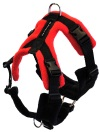 Perfect Fit Harness Dog Training Behaviour Rainbow Dogs Brighton Hove